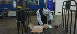通道式核辐射监测仪助力浙江检验检疫局应急演练 保障国门安全