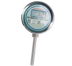 电池供电温度显示仪