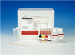 美国VWR疱疹病毒检测试剂盒