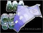 无菌容器封口膜