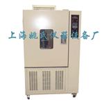 上海高低温试验箱 环境试验箱