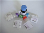 B-02127内源性辅助因子活性蛋白抗体(人)